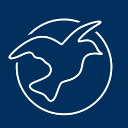 Logo forumZFD