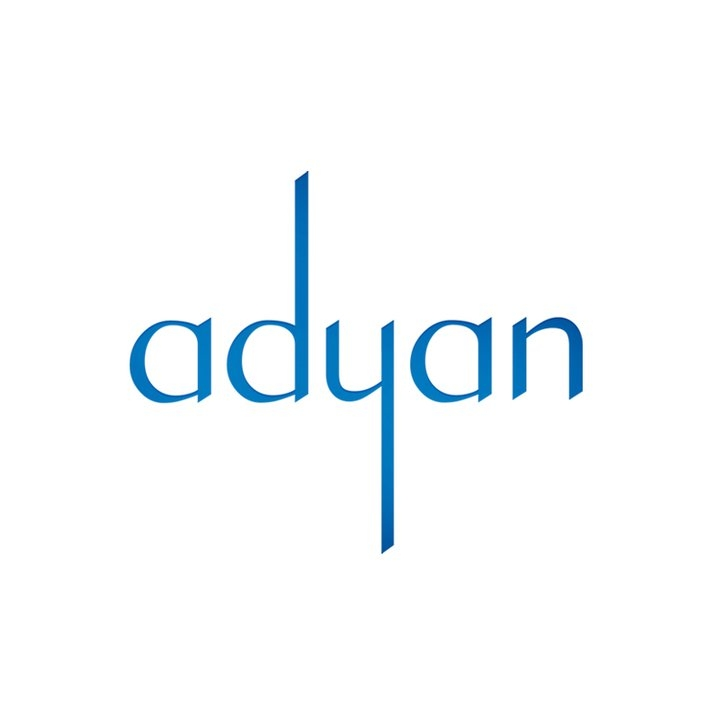 Adyan 2011 Annual Report