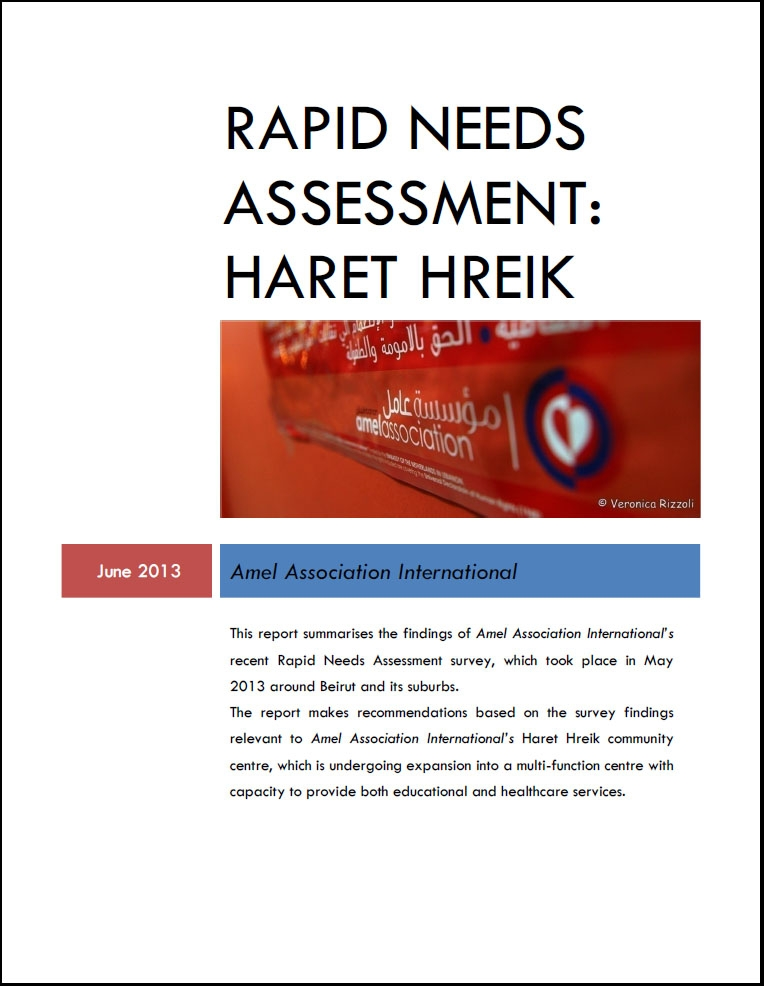 Rapid Needs Assessment: Haret Hreik