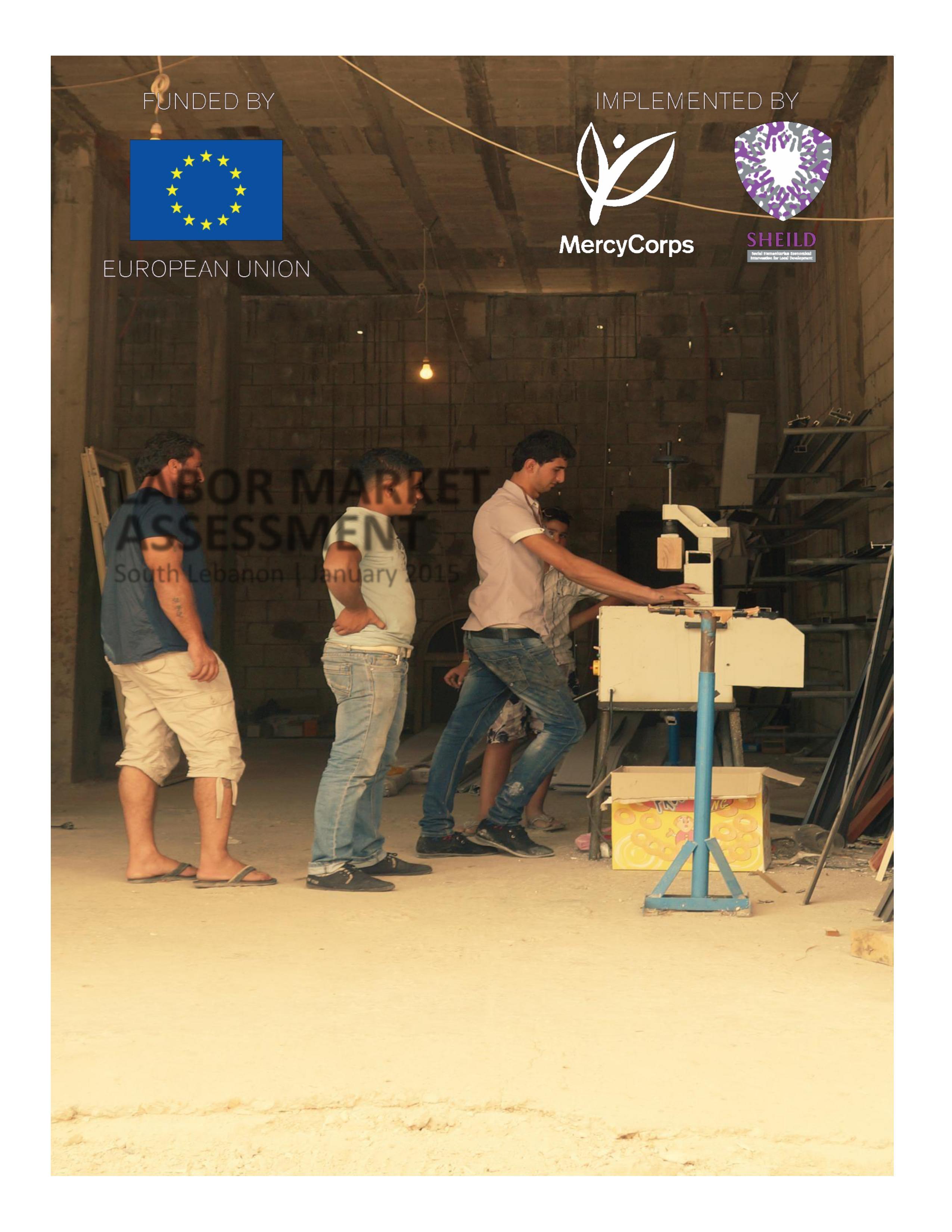 Labor Market Assessment In South Lebanon